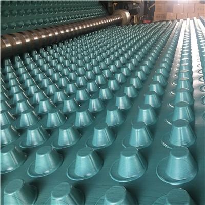 30厚蓝绿色排水板